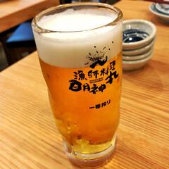 ビール 夏と言えば…よく冷えたビール! 10km…