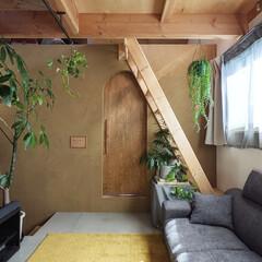 リノベーション/インテリア/DIY/建築/住宅/セルフビルド/... リノベーション事例。リビングの壁は左官仕…(1枚目)
