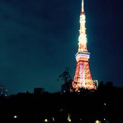 東京タワー/写真/散歩/夜景/お出かけ 東京タワー🗼📷 雨の日が続いていますが、…(1枚目)