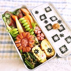 お弁当/節約/キッチン/レシピ/ランチ ウインナーが主役ひまわり弁当(o^^o)