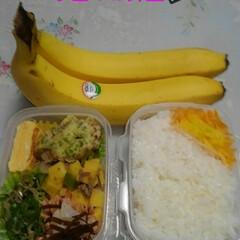 今日もお仕事頑張って/手作り/今日のお弁当 今日のお弁当🍱  #玉子焼き(醤油味) …