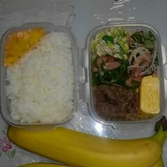 手作り/お弁当/令和初の投稿 今日のお弁当🍱  #玉子焼き(塩コショウ…