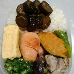 「今日のお弁当🍱  #卵焼き(だし巻き) …」(1枚目)