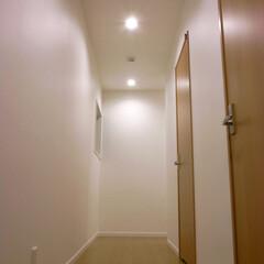 白/廊下/明るい 玄関からの廊下の眺め