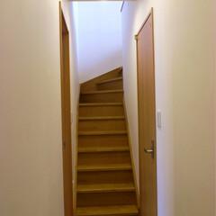 階段/木 1階から2階への階段