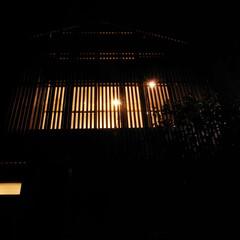 照明/夜景/光/温かい リビングから漏れる光