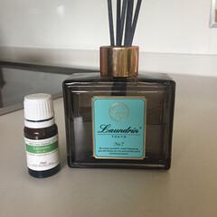 ラベンダー 芳香剤 保冷剤/生活雑貨 初投稿です♡ よろしくお願いします(^^…