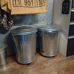 渡辺金属工業 オバケツ M60 KBK5703(バケツ、ポリバケツ)を使ったクチコミ「うちの缶とペットボトルのゴミ箱。  ブリ…」