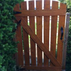 カインズホームで調達/門扉/DIY 我が家には裏門があります。 その門扉を新…