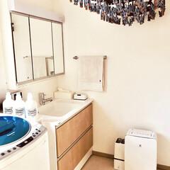 脱衣室 部屋干し100%の我が家 脱衣室=洗濯場…