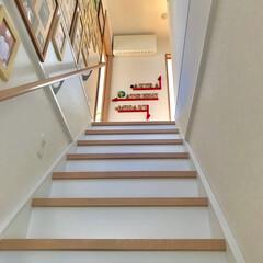 フォトフレーム/アルバム/階段インテリア/インテリア 自然の光✨の中 表情を変える階段♡  壁…