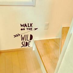 ウォールステッカー/インテリア 我が家の急な階段の足元へ 遊び心をプラス…