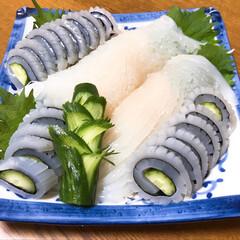 今晩のお刺身逸品/グルメ 青森県 三沢産  鮮度抜群の生いかを お…