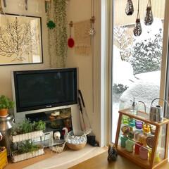 リビングインテリア/インテリア 仙台13センチ積雪の朝✨ 部屋からの景色…