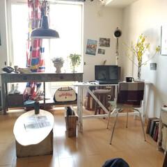 リビング/テーブル/デスク/ベンチ/棚/テレビボード/... 春らしいコーディネート 花やグリーンが楽…(2枚目)