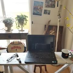 リビング/テーブル/デスク/ベンチ/棚/テレビボード/... 春らしいコーディネート 花やグリーンが楽…(5枚目)