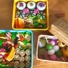 行楽弁当/お花見弁当/お弁当 🌸お花見弁当🌸  京都へお花見に行って来…