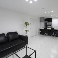 ホワイト/LDK/照明/LDEダウン スッキリとした、白と濃紺の空間です。ダウ…
