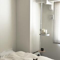 ドローアライン 突っ張り棒 伸縮 ワイヤーシェード シェードのみ 照明器具 ライト ランプシェード フロアライト   DRAW A LINE(フロアライト)を使ったクチコミ「寝室のルームライト。  実はこれ、縦に使…」(1枚目)