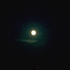 お月様 お月様が綺麗だったのでパシャリと撮ってみ…