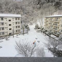 雪景色 私が住んでる地域は、春が来るのが遅いっ💧…