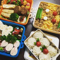 お弁当/住まい/キッチン/フード/グルメ ピクニック弁当🍱 もうすぐ3月🌸 暖かい…