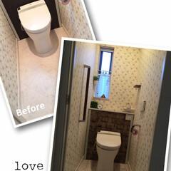 スーパービバホーム/リメイク/トイレ/キャンドゥ/セリア/ダイソー 10年使い込んだ床は所々剥げが目立ちだし…