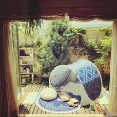 アウトドアリビング/ガーデニング/グランピング/ニトリ ニトリのシェードを出して、 お庭で夏を満…
