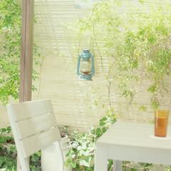 アウトドアリビング/グランピング/ガーデニング お庭のパーゴラの下で夏の風に あたると気…
