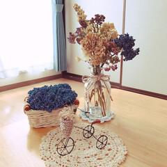 いつも、いいね♪ありがとう♡/初紫陽花のドライフラワー/ダイソーの籠/ダイソーの花瓶/ワイヤークラフト三輪車/梅雨/... こんにちは😃 紫陽花の花をドライフラワー…