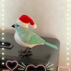 クリスマス/Francfranc/小鳥/クリスマスツリー 昨日Francfrancで前から欲しかっ…