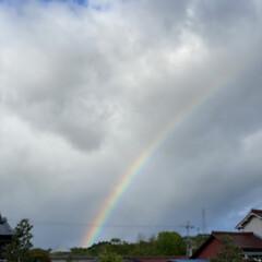 プリン/夜ご飯/虹 買い物帰りに虹が出てましたぁ~✨ めっち…(1枚目)