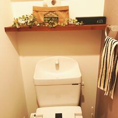 トイレ棚/DIY棚/DIY上手になりたい/DIY初心者/DIY女子/100均/... トイレットペーパーの予備を置く場所を作り…
