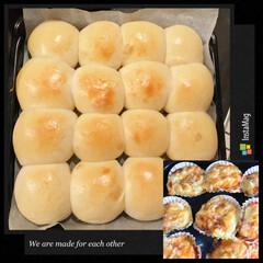 焼きたて♡/お惣菜パン/ちぎりパン/フード 今晩は、焼きたてちぎりパンとホワイトシチ…