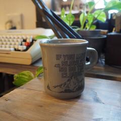 マグカップ キントー KINTO スローコーヒースタイル マグ 400ml グレー Slow Coffee Style | キントー(マグカップ)を使ったクチコミ「マグカップ。 旦那さんに買ったものだけど…」