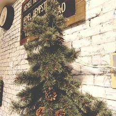 バスロールサイン/studioCLIP/ナチュラル/クリスマスツリー/DIY/雑貨/... クリスマスツリー出しました🌲  しばらく…