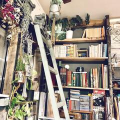 DIY 棚 壁 柱 ツーバイ材用 2×4材用突っぱりジャッキ ユニクロ Walist ウォリスト(その他DIY、業務、産業用品)を使ったクチコミ「夜のリビング棚アップです。  棚を自作す…」