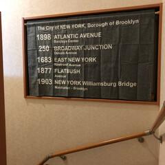 ホームセンター/カフェカーテン 階段の途中にある窓に突っ張り棒で、ブルッ…