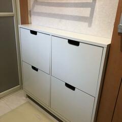 シンデレラフィット/イケア/IKEA 脱衣所の洗剤ストック収納は、イケアのST…