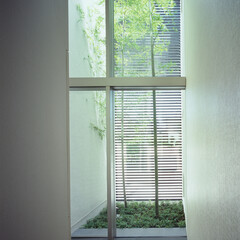 モダン/シンプル/ナチュラル/スタイリッシュ/デザイン/デザイナー/... 坪庭に面した2層吹き抜けの大開口サッシは…