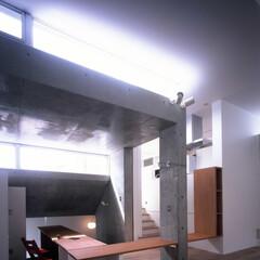 コンクリート/RC/打ち放し/居間/ハイサイドライト/フローリング/... 玄関から続く板はこのフロアで、机の天板に…