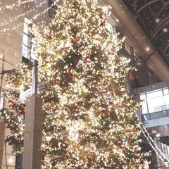 福岡/イルミネーション/クリスマス/クリスマスツリー/おでかけ/旅行/... 一気にX'masモード全開です💨 そびえ…(4枚目)