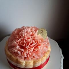 ケーキ/スイーツ/カーネーション/母の日/フード 祝!母の日💐 花束を買う予定でしたが、 …(1枚目)