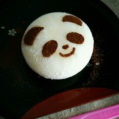 アイス/パンダ 上野動物園 行きたいな~ 🐼の香香に思い…