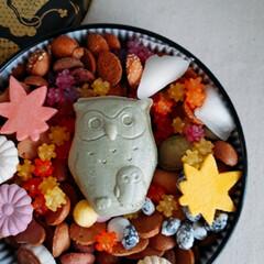 もなか/スイーツ/和菓子/ふくろう/秋/金平糖/... 実りの秋🍁 江戸和菓子銀座菊廼舎の四季を…