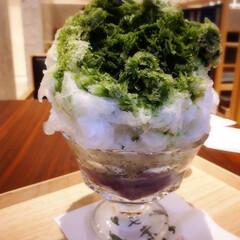かき氷/抹茶/グルメ/フード/スイーツ 甘味茶屋にて今年の初氷。 かなり大きめで…