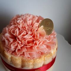 ケーキ/スイーツ/カーネーション/母の日/フード 祝!母の日💐 花束を買う予定でしたが、 …(2枚目)