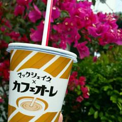 シェイク/マクドナルド/フード/グルメ/スイーツ/カフェオーレ こちら沖縄は気温25℃ 新緑の候でござい…