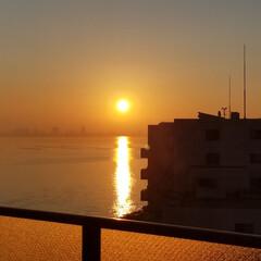 海を感じるインテリア/夜明け/春/風景/小さい春 春の夜明け。 凛と澄んだ冬の夜明けも素敵…