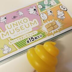 おでかけ/観光/ミュージアム 念願(?)のう○こミュージアムへ。 あち…